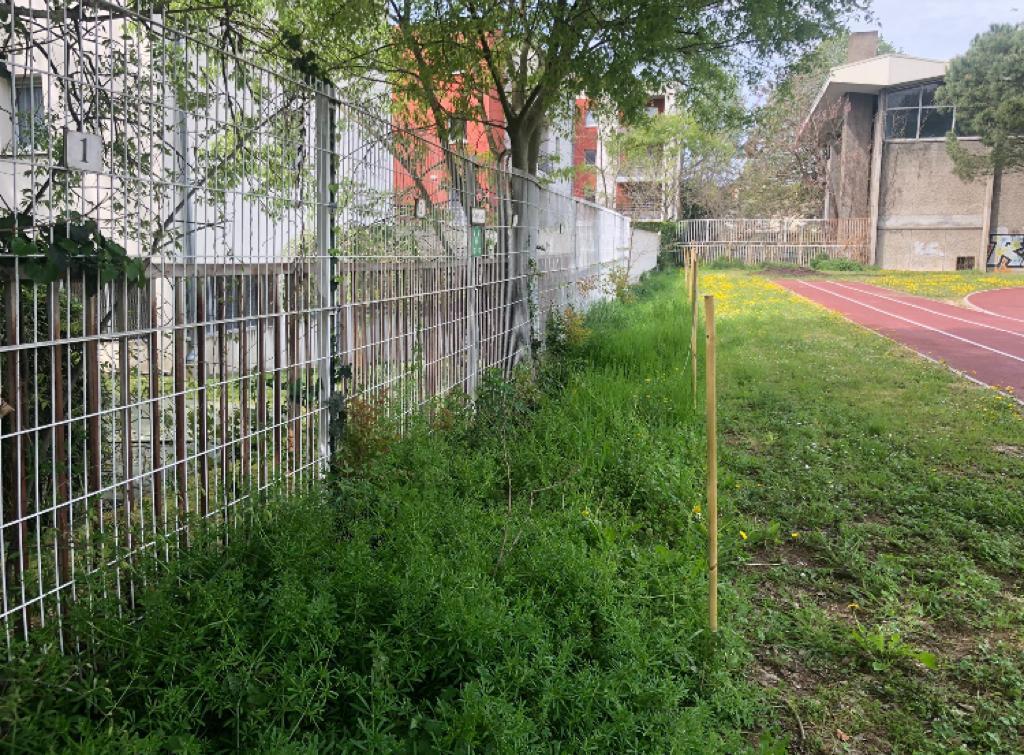 Couloir pour la biodiversité et fauche tardive.